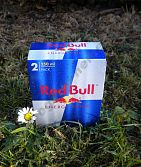 Red Bull Energy Drink 2 x 250 ml 2 Pack