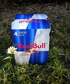 Red Bull 4 x 250 ml EXP.27.8.2017 !!!