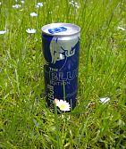 Red Bull Blueberry 250 ml EXP.09/2016 !!!